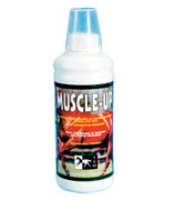 MUSCLE-UP 960ml